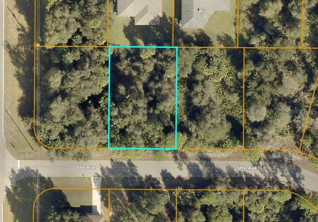 Ute Avenue, North Port, FL 34288 (MLS #C7442420) :: Armel Real Estate