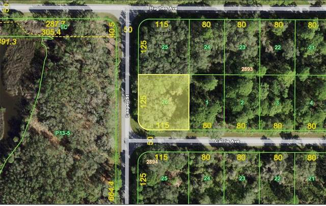 1164 Casper Street, Port Charlotte, FL 33953 (MLS #C7442572) :: CGY Realty