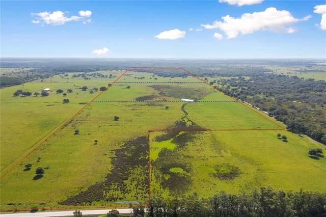 Curtis Road, Myakka City, FL 34251 (MLS #C7442684) :: Bustamante Real Estate