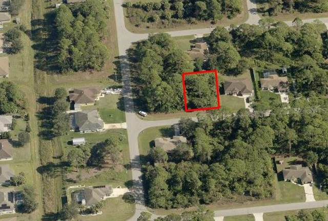 Delmonte Street, North Port, FL 34288 (MLS #C7442734) :: The Kardosh Team