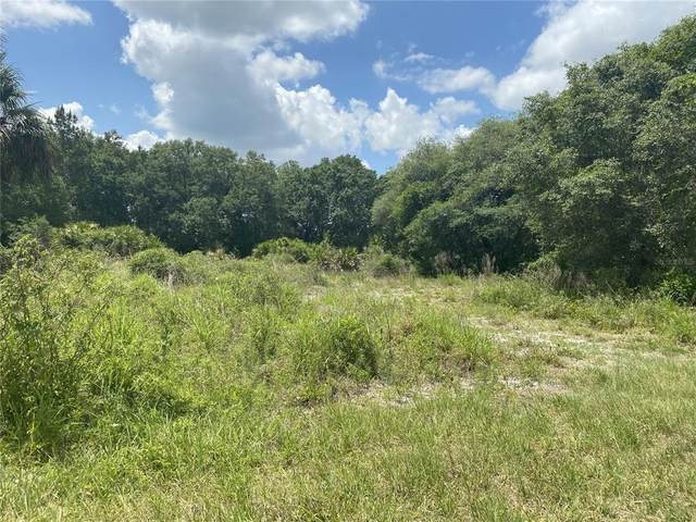 S Us Hwy 17, Zolfo Springs, FL 33890 (MLS #C7442748) :: Rabell Realty Group