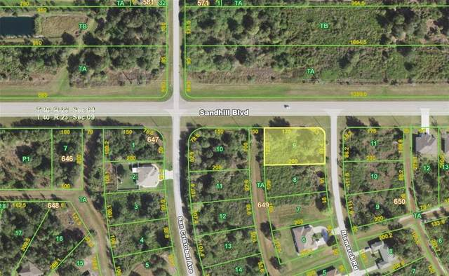 1013 Bismarck Road, Punta Gorda, FL 33983 (MLS #C7442837) :: Premium Properties Real Estate Services