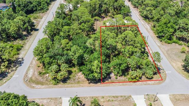 17372 Billiar Avenue, Port Charlotte, FL 33948 (MLS #C7442897) :: Southern Associates Realty LLC