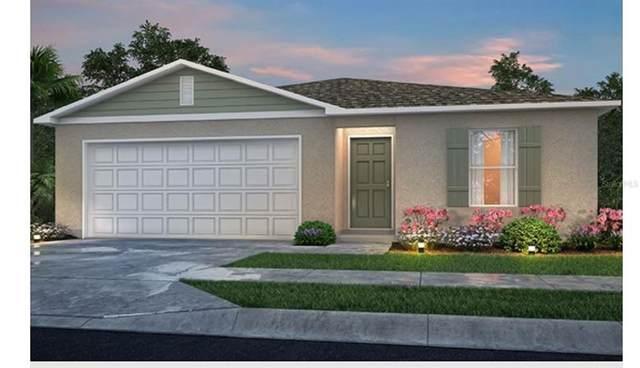 1051 Carzenovia Street, Port Charlotte, FL 33952 (MLS #C7442933) :: Everlane Realty