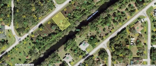 226 Evaro Drive, Port Charlotte, FL 33954 (MLS #C7442943) :: MVP Realty