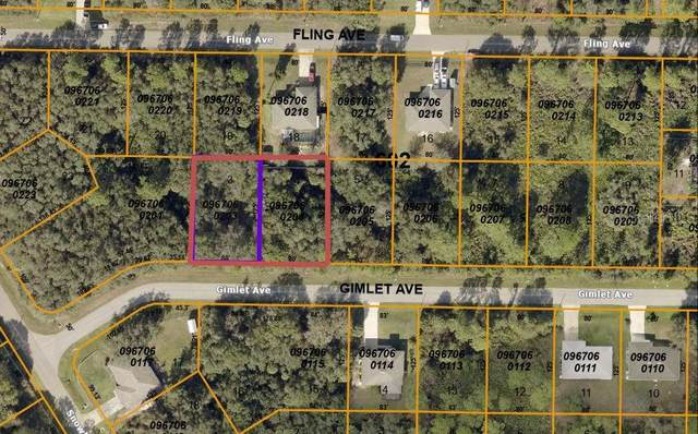 Gimlet Avenue, North Port, FL 34291 (MLS #C7442992) :: CENTURY 21 OneBlue