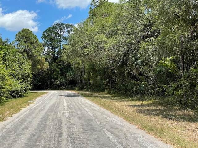 15041 Ransom Avenue, Port Charlotte, FL 33953 (MLS #C7443044) :: The Lersch Group