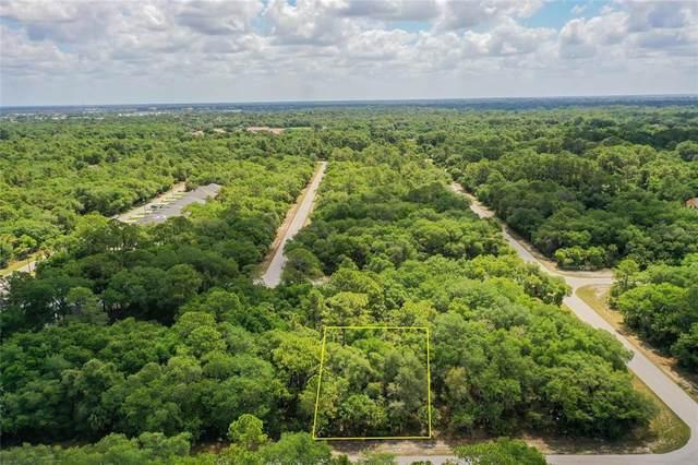 2100 Hilton Street, Port Charlotte, FL 33948 (MLS #C7443047) :: Bob Paulson with Vylla Home