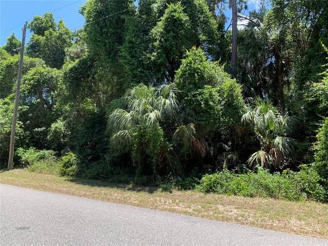 17205 Fallkirk Avenue, Port Charlotte, FL 33954 (MLS #C7443080) :: CGY Realty
