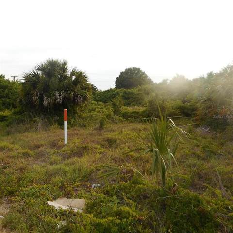 1377 Frizzell Lane NW, Port Charlotte, FL 33948 (MLS #C7443140) :: Team Turner