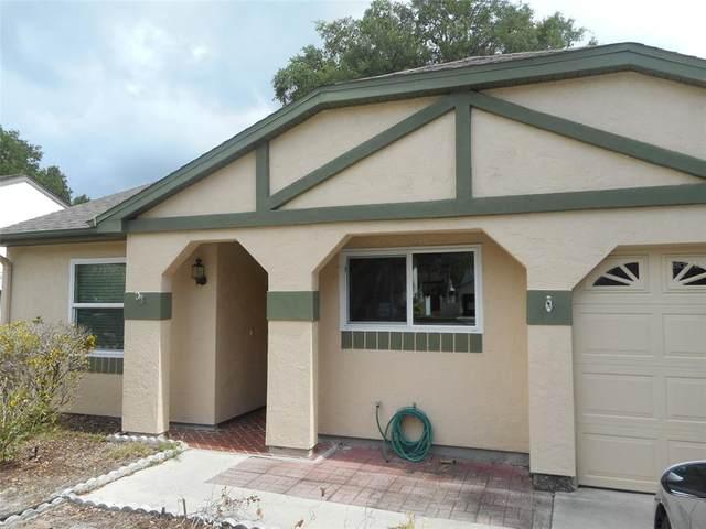 19600 Mombin Court, Port Charlotte, FL 33952 (MLS #C7443154) :: Griffin Group