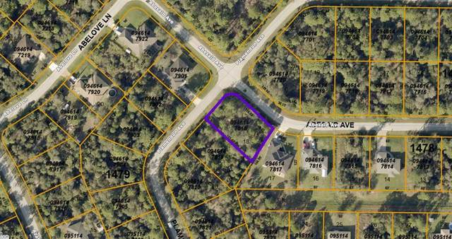 Abesaid Avenue, North Port, FL 34291 (MLS #C7443170) :: New Home Partners