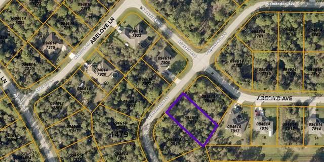 Plamendon Avenue, North Port, FL 34291 (MLS #C7443175) :: Team Pepka
