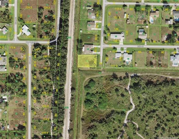 393 Sunflower Street, Punta Gorda, FL 33982 (MLS #C7443222) :: Southern Associates Realty LLC