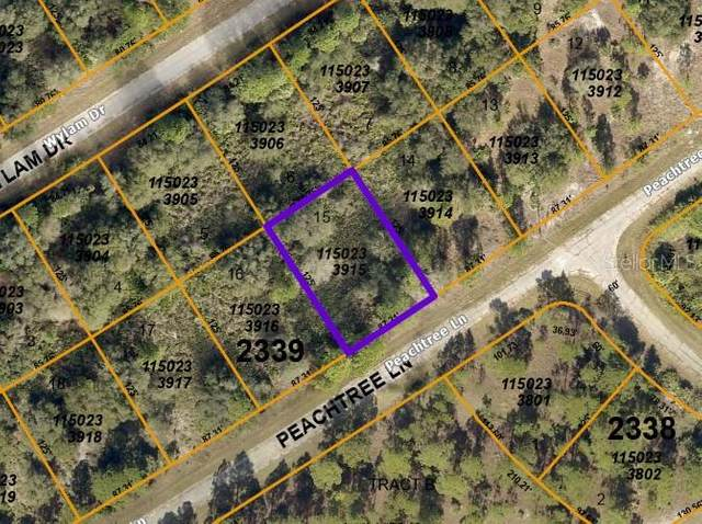 Lot 15 Peachtree Lane, North Port, FL 34288 (MLS #C7443344) :: Burwell Real Estate
