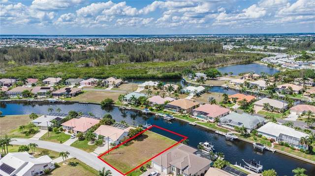1230 Royal Tern Drive, Punta Gorda, FL 33950 (MLS #C7443349) :: The Duncan Duo Team