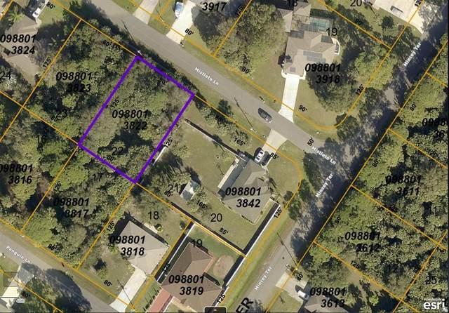 Mistleto Lane, North Port, FL 34286 (MLS #C7443375) :: Baird Realty Group