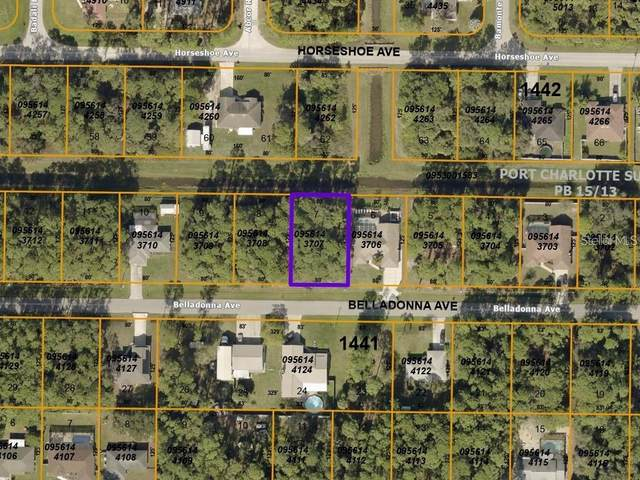 Belladonna Avenue, North Port, FL 34286 (MLS #C7443549) :: The Price Group