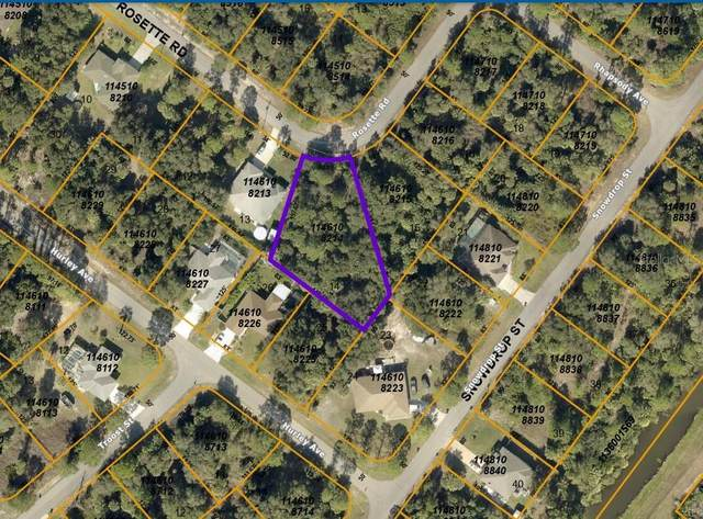 Rosette Road, North Port, FL 34288 (MLS #C7443684) :: The Price Group