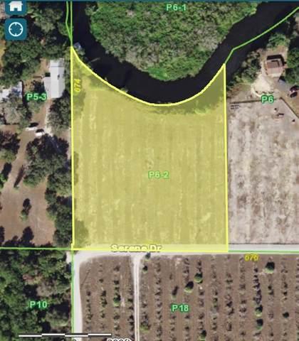 32720 Serene, Punta Gorda, FL 33982 (MLS #C7443743) :: Armel Real Estate