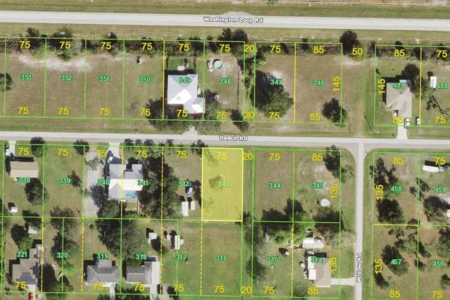 30229 Beech Road, Punta Gorda, FL 33982 (MLS #C7443825) :: Armel Real Estate