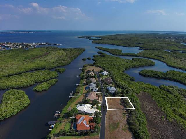 4061 Lea Marie Island Drive, Port Charlotte, FL 33952 (MLS #C7443893) :: Globalwide Realty