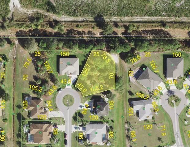 26290 Trinilas Drive, Punta Gorda, FL 33983 (MLS #C7444102) :: Coldwell Banker Vanguard Realty