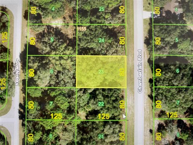 16466 Chamberlain Boulevard, Port Charlotte, FL 33954 (MLS #C7444150) :: Armel Real Estate