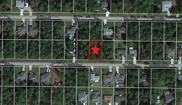 Lot 14 Jaslo Avenue, North Port, FL 34286 (MLS #C7444184) :: Expert Advisors Group