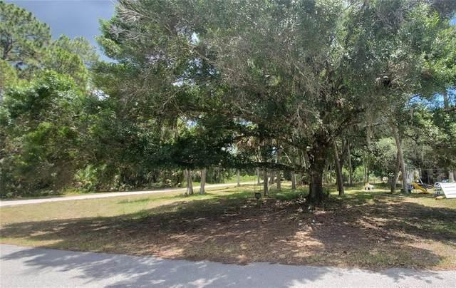 16275 Orrick Avenue, Port Charlotte, FL 33954 (MLS #C7444185) :: Armel Real Estate