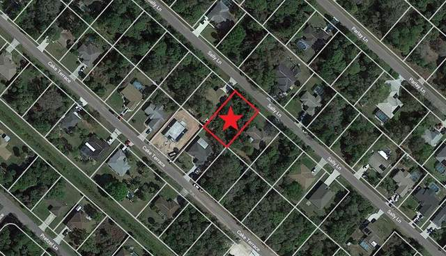 Lot 10 Sally Lane, North Port, FL 34286 (MLS #C7444204) :: The Price Group
