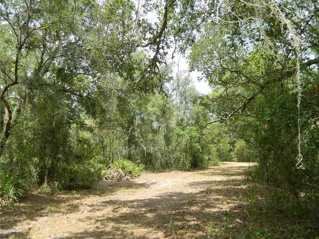 1211 NW Pine Wood Avenue, Arcadia, FL 34266 (MLS #C7444251) :: RE/MAX Marketing Specialists