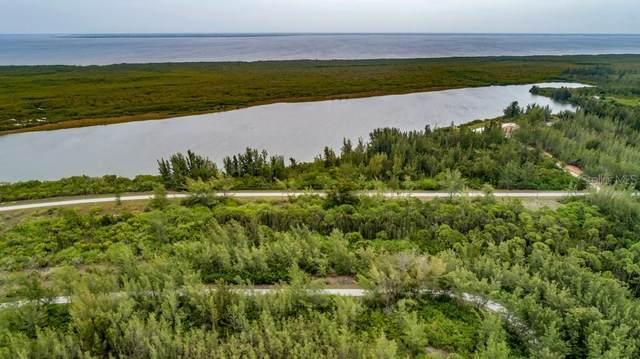 10559 Mangrove Circle, Port Charlotte, FL 33981 (MLS #C7444259) :: Your Florida House Team