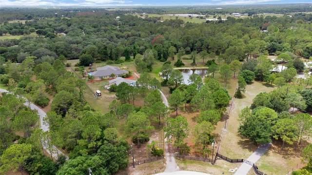 16050 Wildwood Court, Punta Gorda, FL 33982 (MLS #C7444303) :: Armel Real Estate