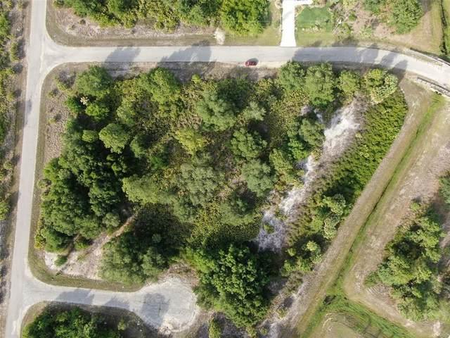 Wylam Drive, North Port, FL 34288 (MLS #C7444419) :: Your Florida House Team