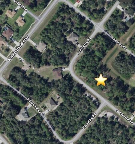 Jollivette Road, North Port, FL 34288 (MLS #C7444445) :: Team Pepka