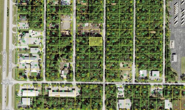 417 Dexter Street, Port Charlotte, FL 33954 (MLS #C7444546) :: Coldwell Banker Vanguard Realty