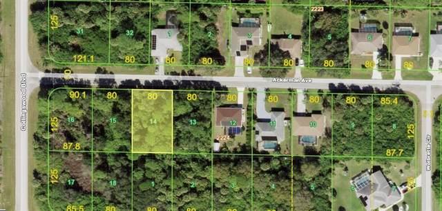 18029 Ackerman Avenue, Port Charlotte, FL 33948 (MLS #C7444549) :: The Hustle and Heart Group