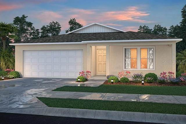 2916 W Santana Drive, Citrus Springs, FL 34433 (MLS #C7444579) :: Zarghami Group