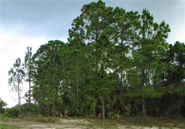 Lot 4 Sheno Drive, North Port, FL 34288 (MLS #C7444636) :: Everlane Realty