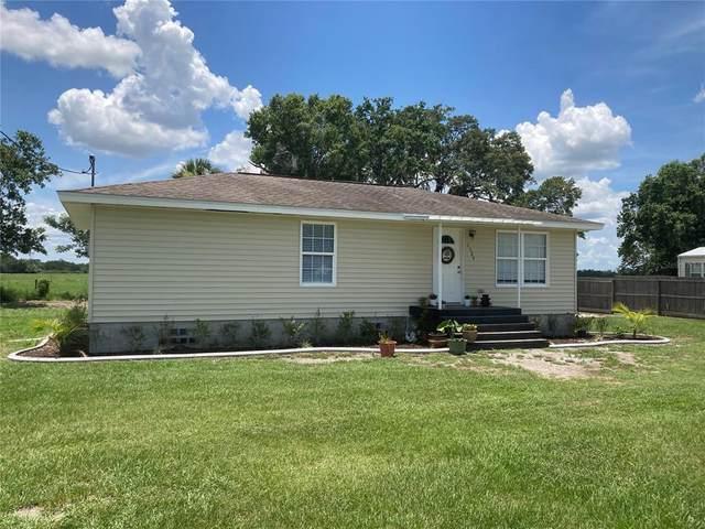 1529 NE Varnadore Street, Arcadia, FL 34266 (MLS #C7444644) :: Armel Real Estate
