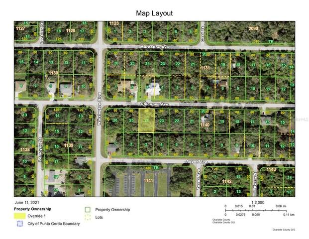 16429 Chicopee Avenue, Port Charlotte, FL 33954 (MLS #C7444651) :: Armel Real Estate