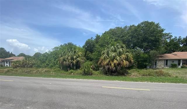 3415 Pellam Boulevard, Port Charlotte, FL 33948 (MLS #C7444856) :: Zarghami Group