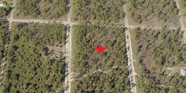 18 Wells Avenue, Lehigh Acres, FL 33936 (MLS #C7444860) :: Frankenstein Home Team