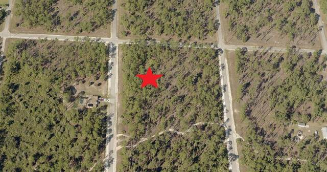 20 Wells Avenue, Lehigh Acres, FL 33936 (MLS #C7444861) :: Frankenstein Home Team