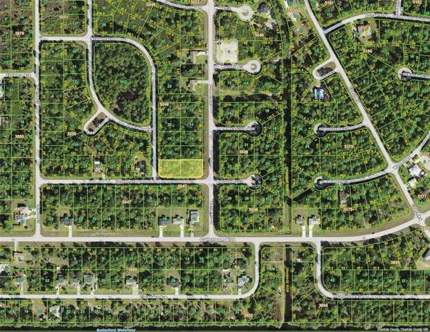 12256 Darden Street, Port Charlotte, FL 33981 (MLS #C7444871) :: Team Pepka