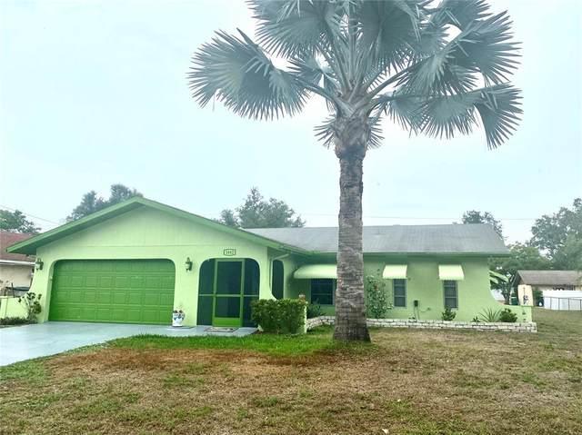 1042 Malay Terrace NW, Port Charlotte, FL 33948 (MLS #C7444883) :: Frankenstein Home Team