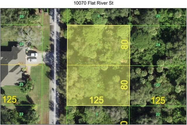 10070 Flat River Street, Port Charlotte, FL 33981 (MLS #C7444916) :: Coldwell Banker Vanguard Realty