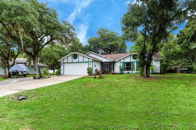 14512 Elwood Avenue, Port Charlotte, FL 33953 (MLS #C7444917) :: Armel Real Estate