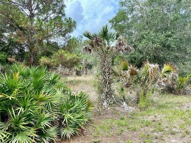 Janaro Road, North Port, FL 34288 (MLS #C7444989) :: Frankenstein Home Team